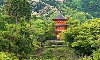 מקדשים יפהפיים בקיוטו הקסומה