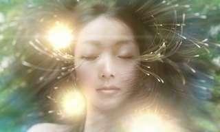אור החיים