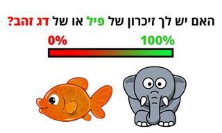 בחן את עצמך: האם יש לך זיכרון של דג זהב או של פיל?