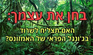 בחן את עצמך: <b>איך</b> יסתיים המסע שלך בג&#x27;ונגל הפראי של האמזונס?