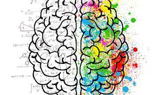 בחן את עצמך: איזה צד של <b>המוח</b> <b>שלך</b> חזק יותר ומה זה אומר?