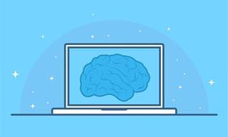 ניחנתם במוח חד וחריף? בואו להוכיח זאת במבחן הידע הכללי הזה