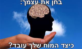 בחן <b>את</b> עצמך: ענה על 10 <b>השאלות</b> האלה וגלה איך המוח שלך עובד