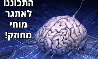 <b>מבחן</b> זיכרון שיאתגר את כל התאים החשובים במוח שלכם