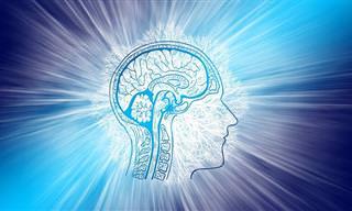 <b>בחן</b> <b>את</b> <b>עצמך</b>: האם הזיכרון <b>שלך</b> נשאר חזק גם בימים האלה?