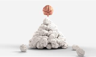 אתגר המוח: נראה אתכם עונים על כל השאלות הללו בזמן קצוב
