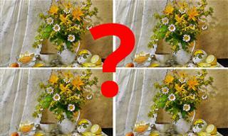 מצא את ההבדלים: בחנו את העיניים שלכם מול <b>אוסף</b> התמונות הבא