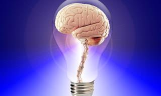 בחן את עצמך: עד כמה מבריק וחד הידע הכללי שלך?
