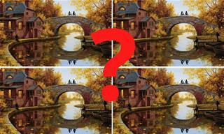 מצא את ההבדלים: רק מי שבאמת חכם ימצא את התמונה יוצאת הדופן
