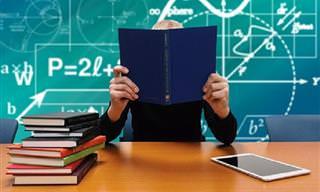 בחן את עצמך: האם אתה חכם יותר מתלמיד בבית ספר יסודי?