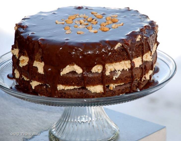 מתכון לעוגת שוקולד וקוקוס